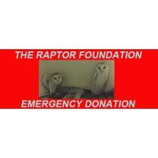 Emergency Donation £5